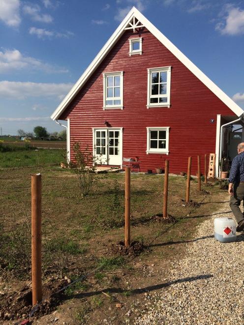 Vor etwa 5 Wochen haben wir diesen Zaum gebaut, der die Einfahrt vom Garten abgrenzen soll.